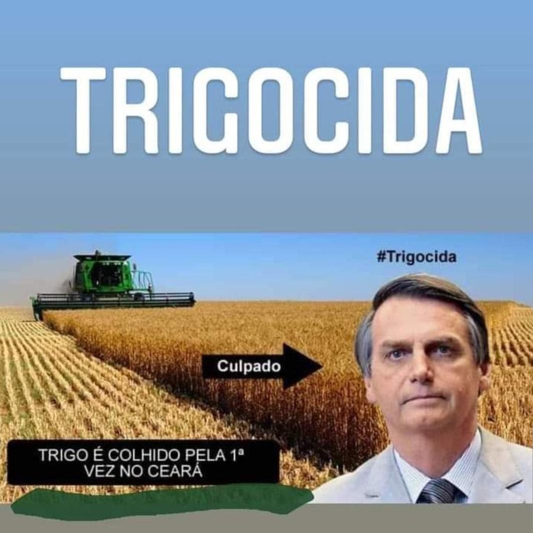 Bolsonaro Trigocida